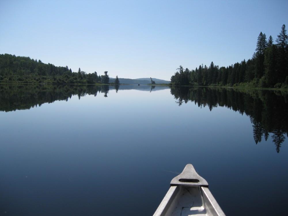 Canoe pog  whitefish algonquin